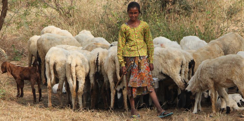 terre des hommes-Holfe für Kinder in Indien
